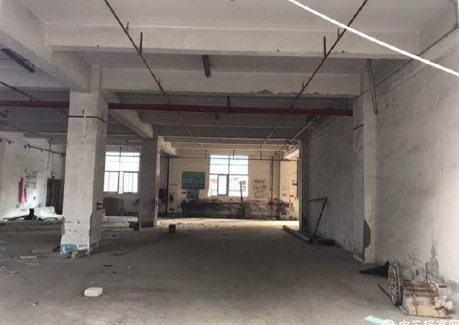 固戍一楼1000平大小可以分租,适合做汽车美容保养维修仓库