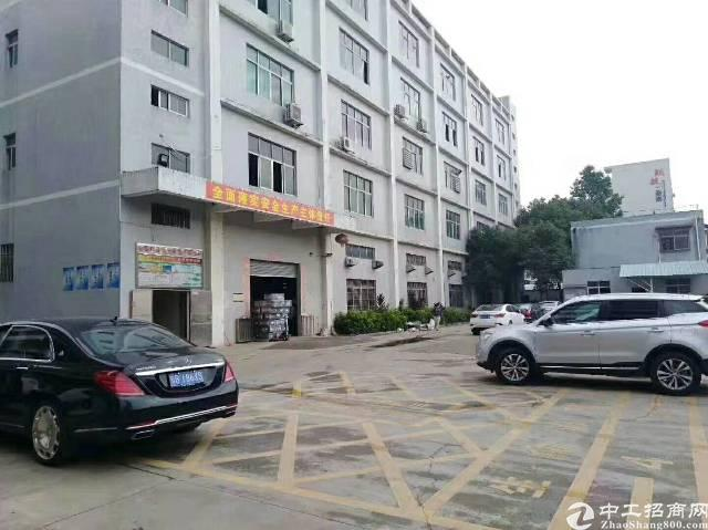 石排新出一二层4800平方,可分租,独立办公楼