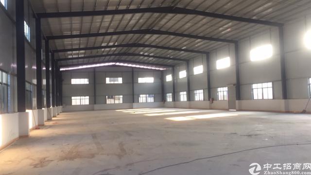 茶山最新出品全新钢构厂房2000平方