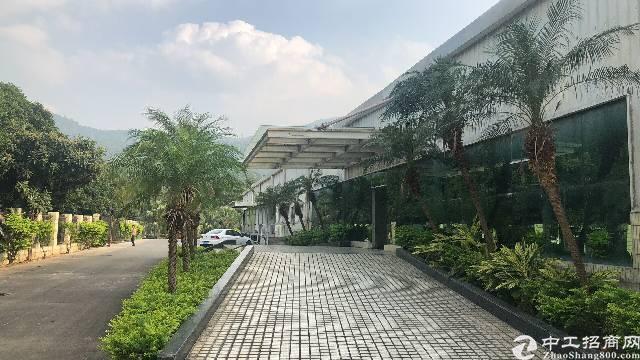 福永凤凰新出钢构厂房4500平米物流仓储电商的福音