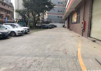 固戍一楼1000平大小可以分租,适合做汽车美容保养维修仓库图片1