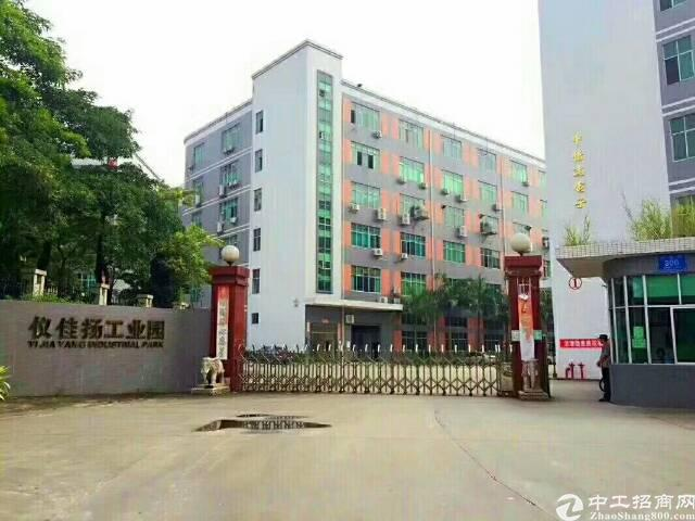 龙华汽车站后面原房东厂房1430平方米招租