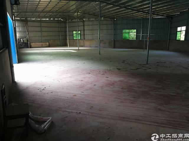 陈江镇新出价格非常便宜厂房