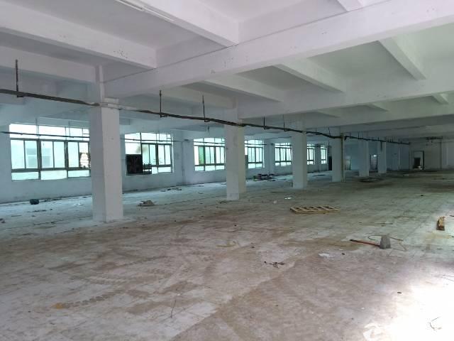 坪山坑梓工业区新出独院一楼1100平,实际面积出租