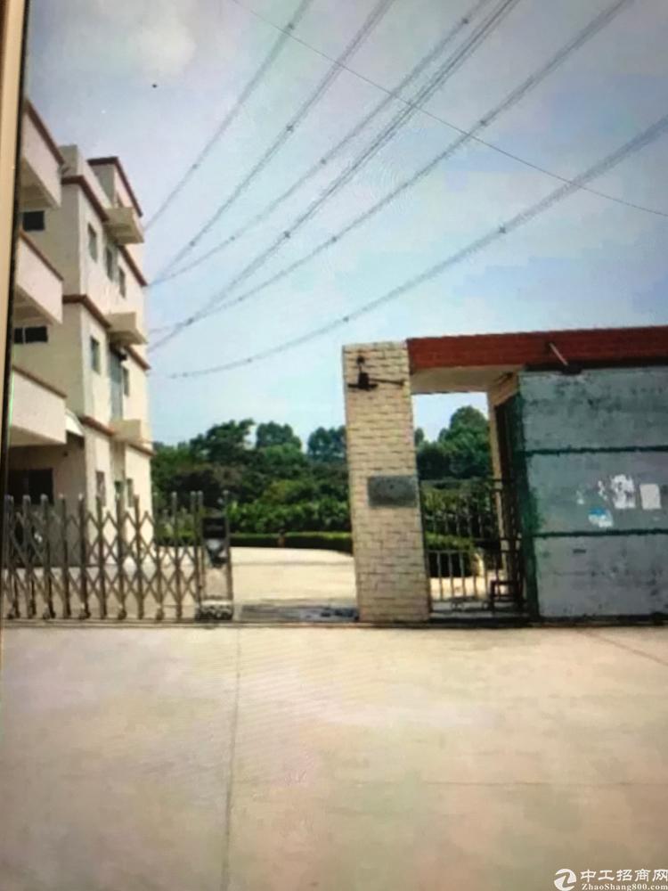 龙溪镇出售国有双证独院8000平方