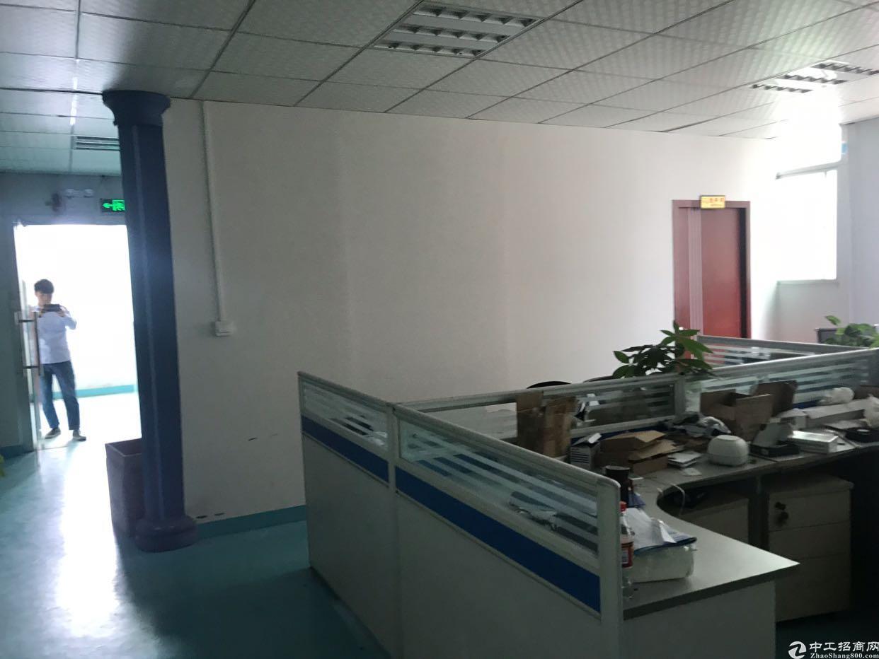观澜章阁楼上带装修办公室车间地坪漆300平方标准厂房出租