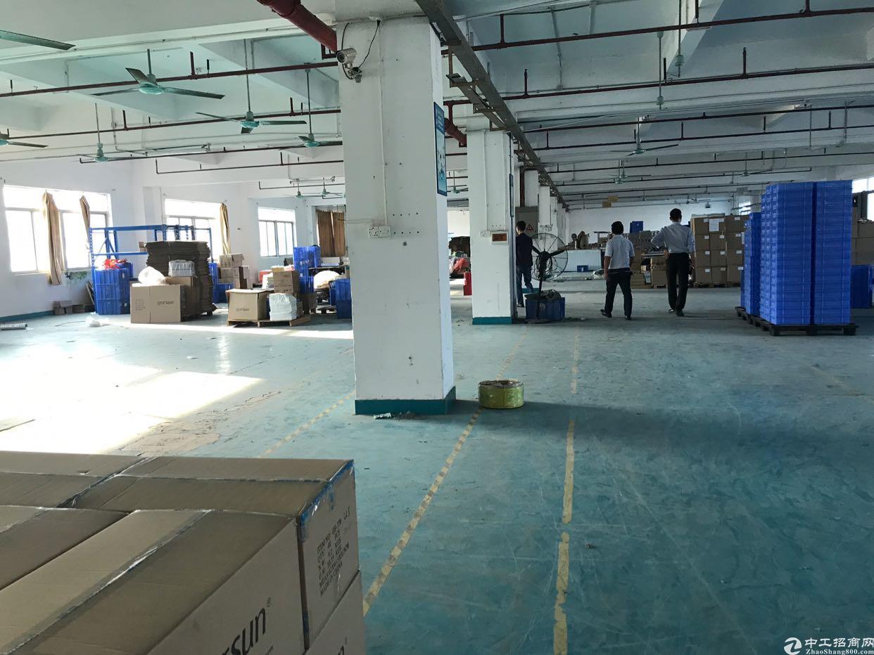 新出原房东自用独院标准厂房1700平方米