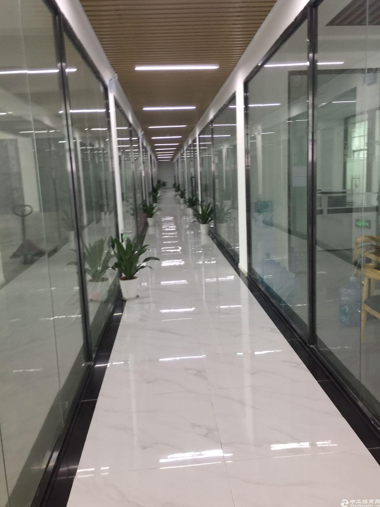 大浪商业中心电商园招租300平带装修