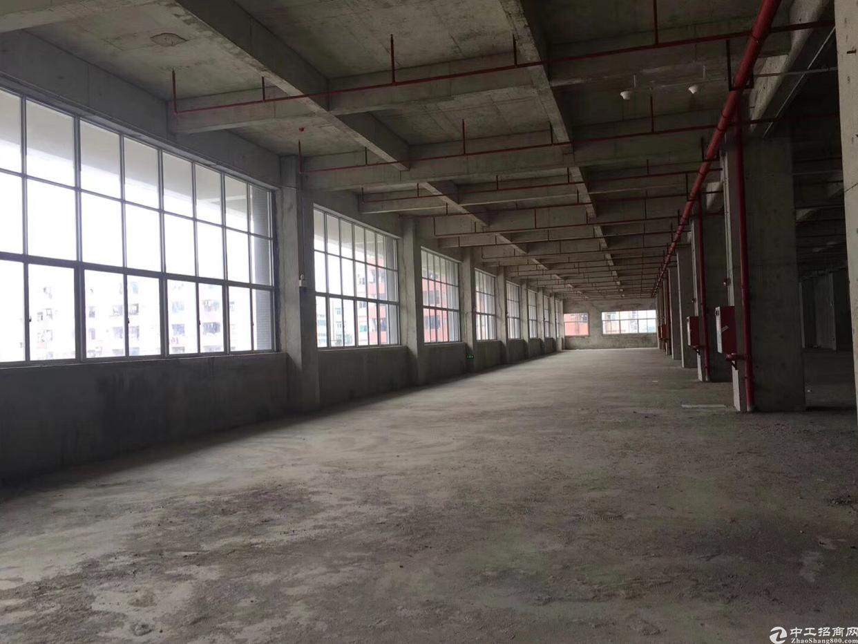 东莞常平全新一手厂房出售,50年产权独立红本,可按揭贷款-图2