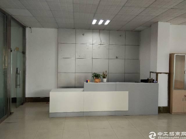 观澜松元新出1160平带豪华办公室装修,水电齐全,全新地坪漆