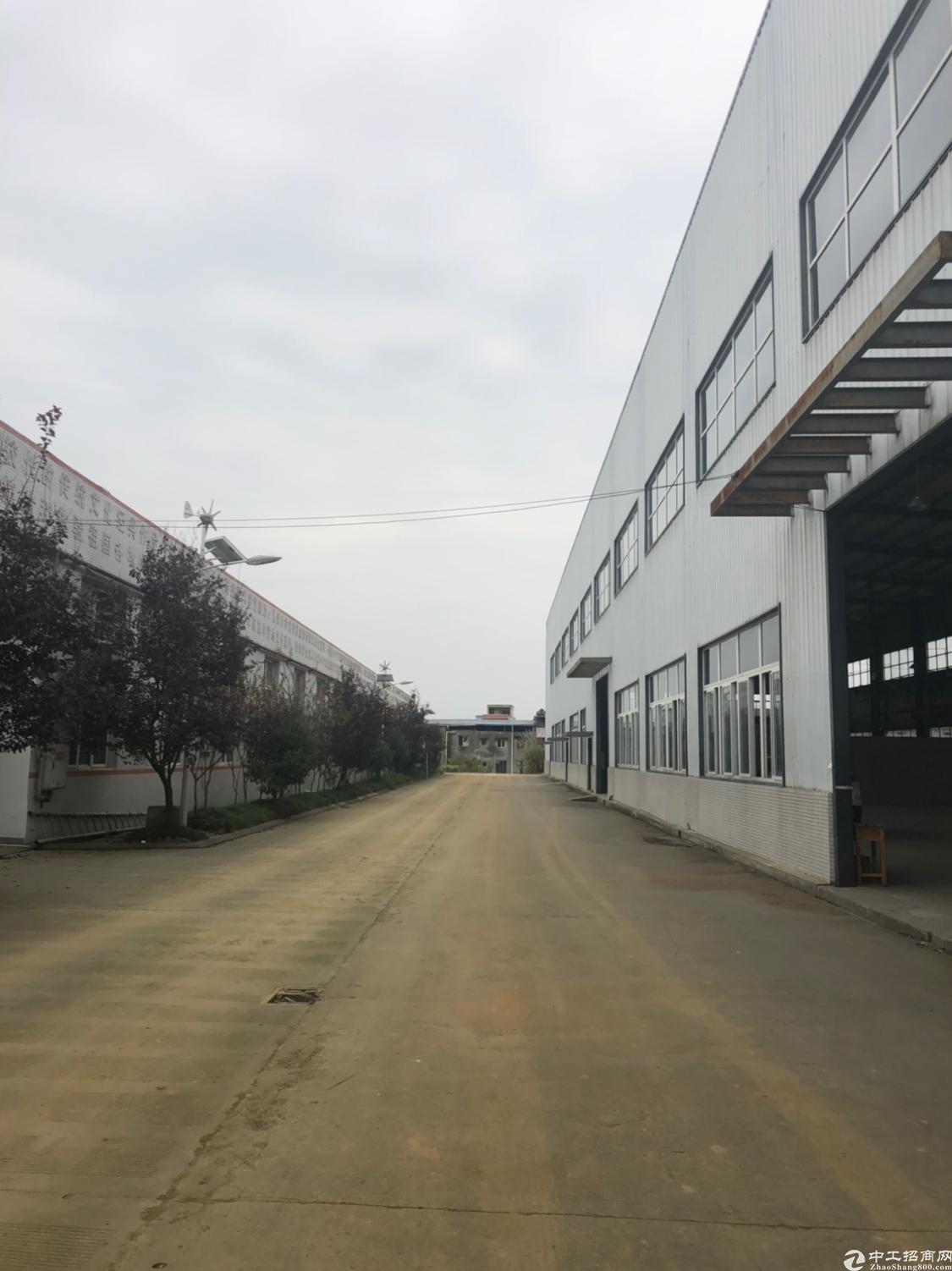 青白江1000平米起单层钢结构厂房出租