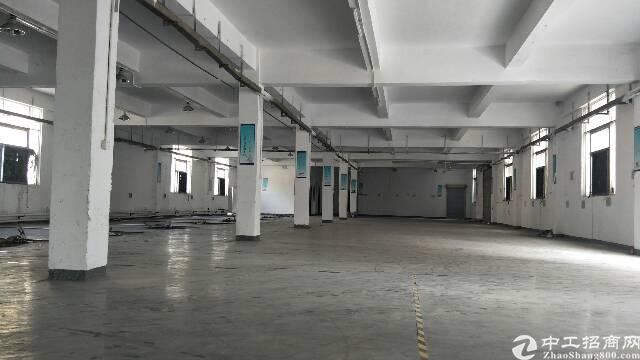 公明南光高速出口进来500米新出厂房一楼1000平大车好出入