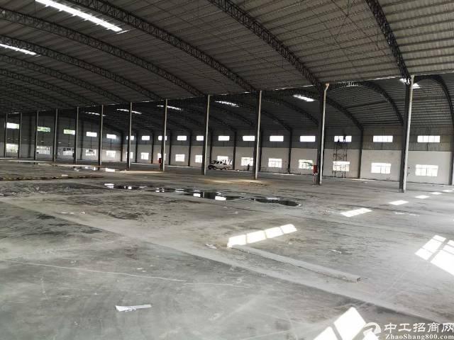 石湾全新独门独院钢结构厂房出租-图4