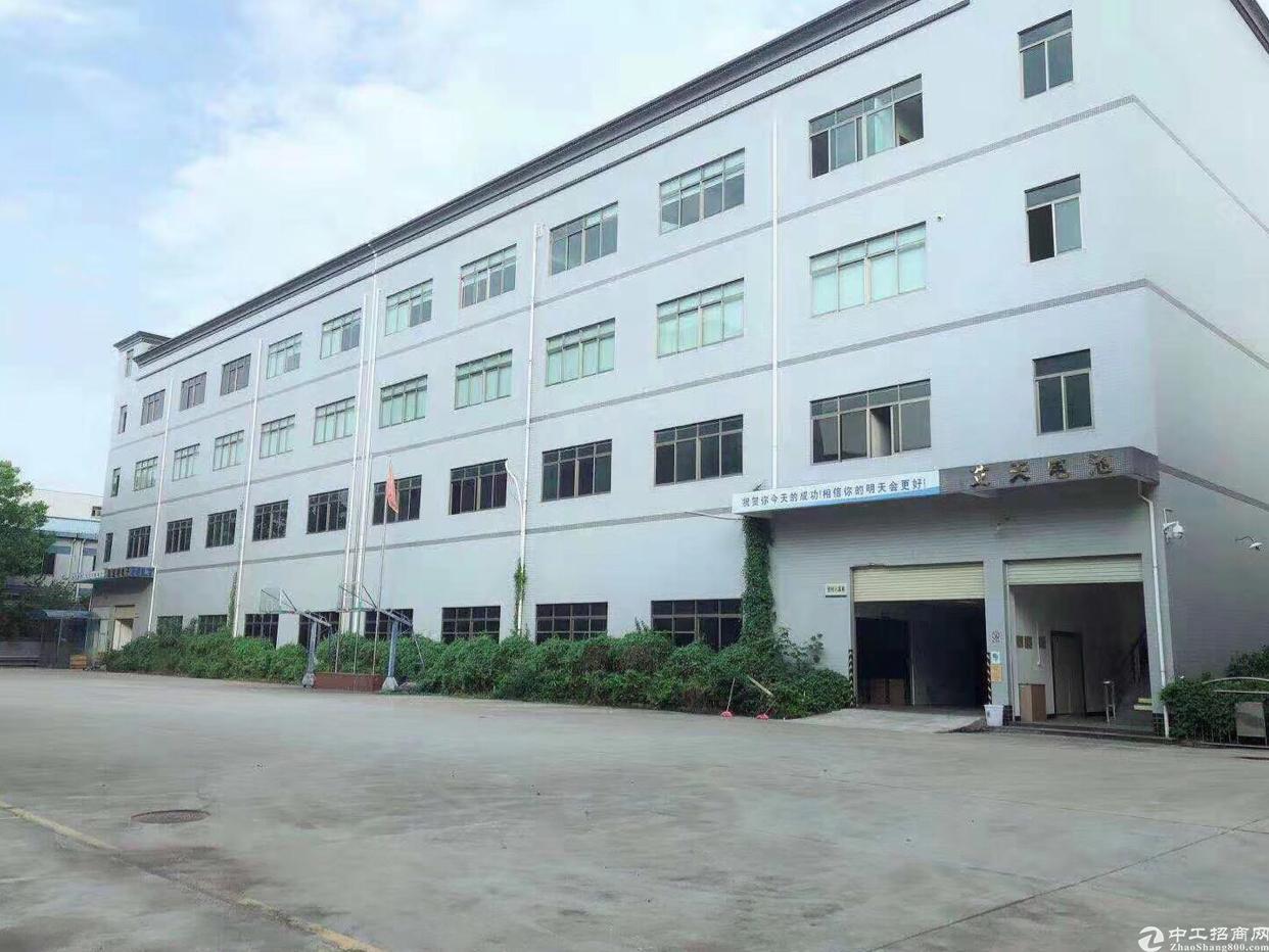 新出标准厂房4800平米