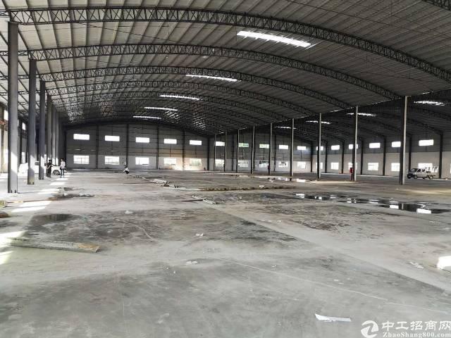 石湾全新独门独院钢结构厂房出租-图2