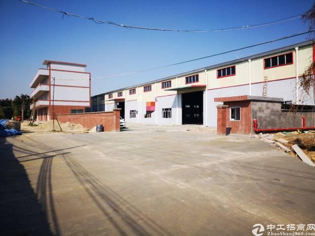 石湾全新独门独院钢结构厂房出租-图3