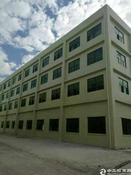 新出原房东标准厂房一楼6米配套消防喷淋货梯可单层分租,