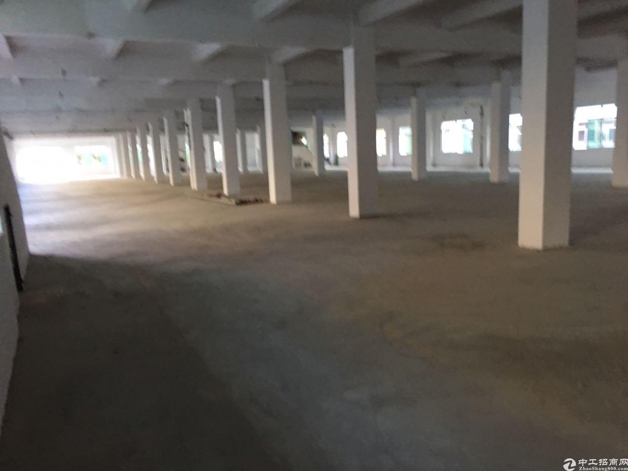 全新标准厂房空地超大