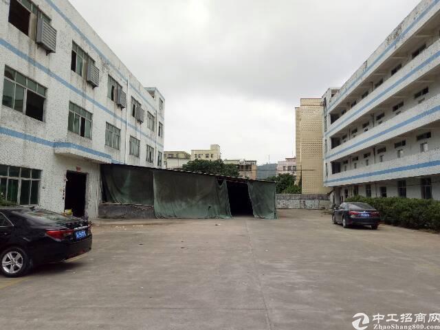 坑梓秀新社区一楼标准厂房1400平方出租