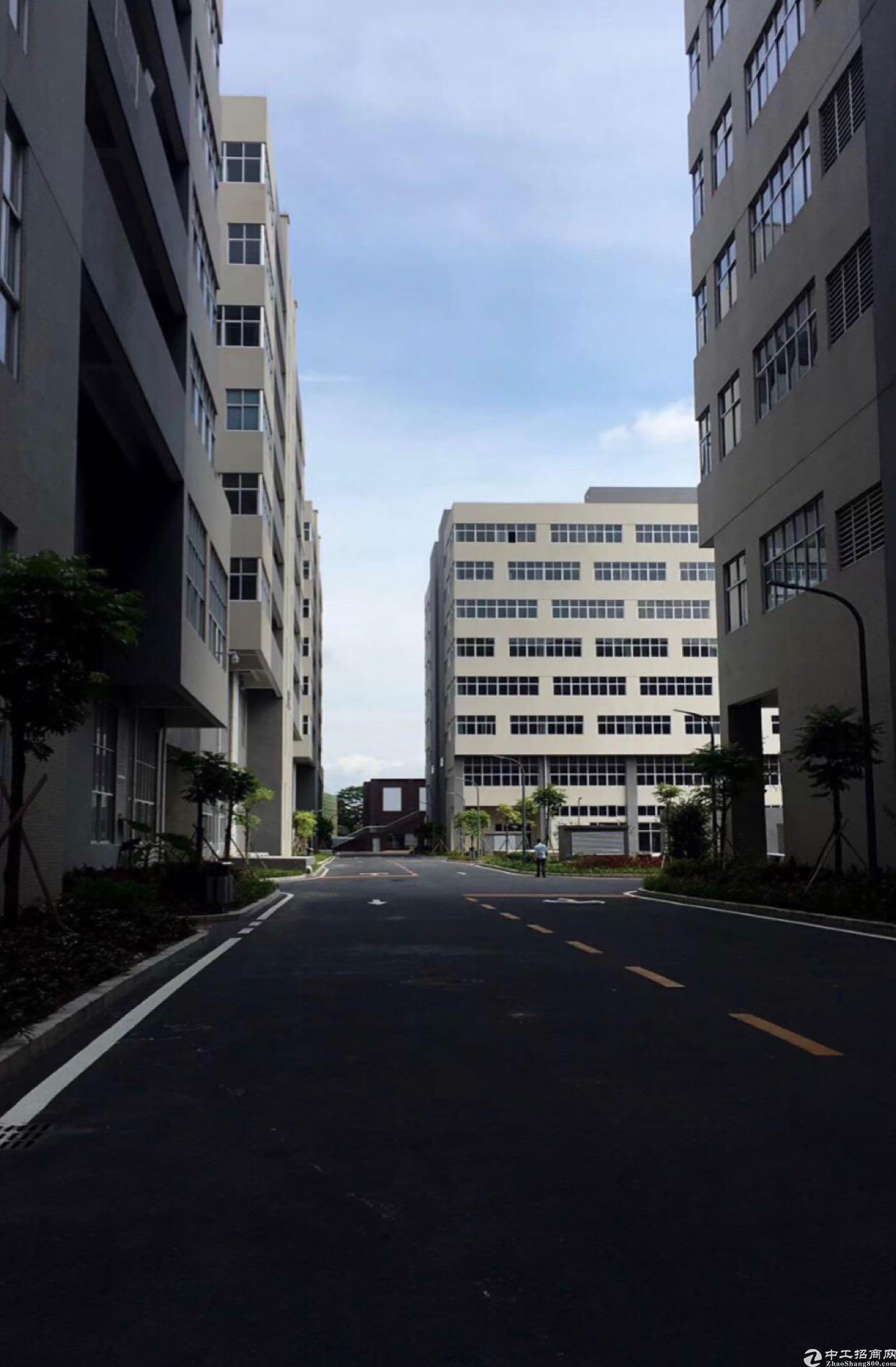东莞常平镇不动产厂房出售1700平米