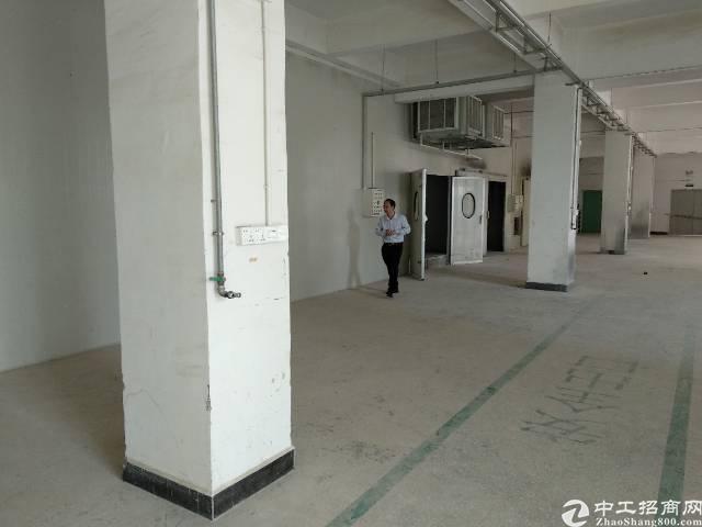 企石镇新出精品独门独院标准厂房 厂房两层2700方,原房东