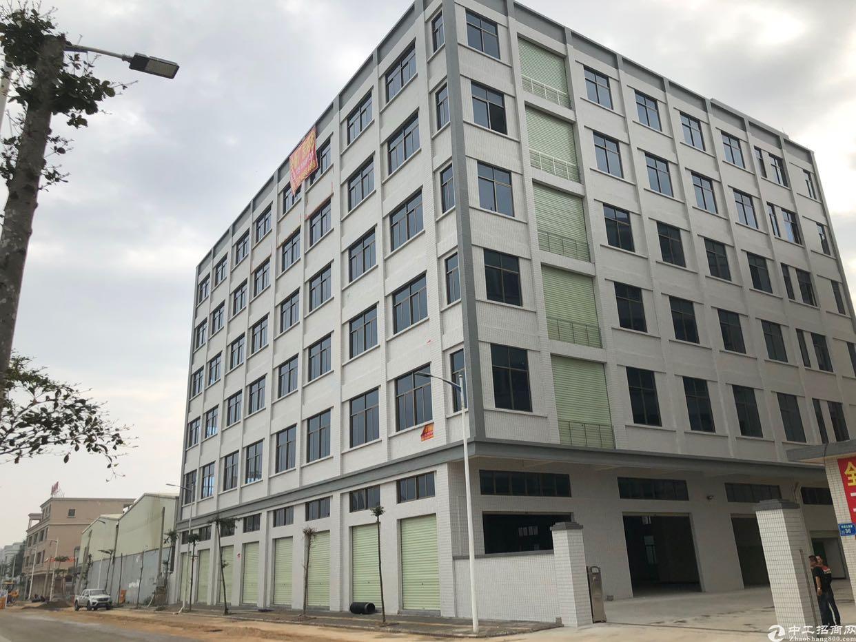 东莞市全新标准厂房10000平方出租,可分租