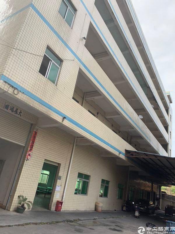 陈江中心地段12000㎡标准厂房可做商业