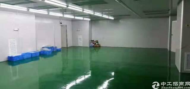 清溪三中带地坪漆厂房1800㎡出租-图3