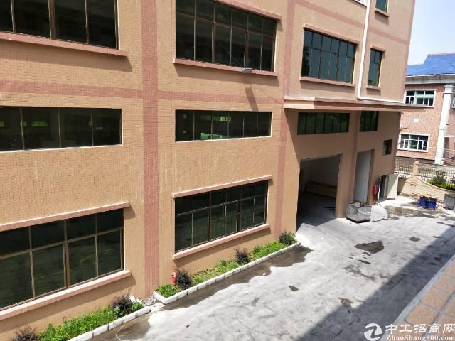 茶山镇全新厂房1-4层共计10300