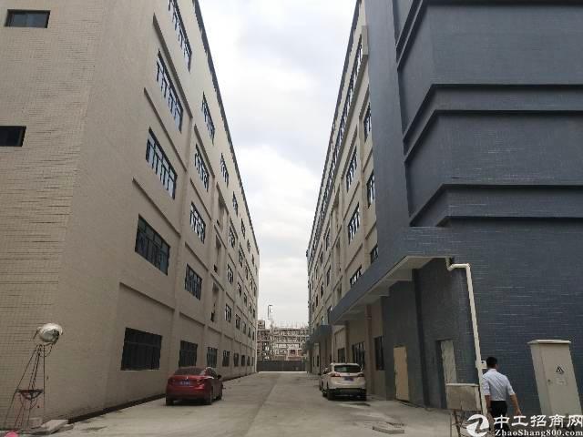 惠阳区新圩镇新出原房东证件齐全标准厂房1-4楼28000