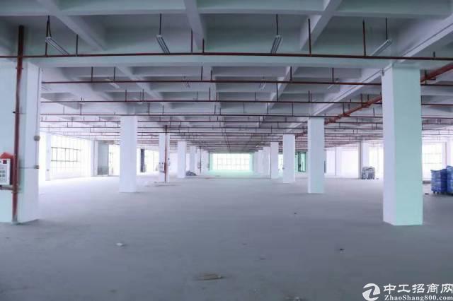 东城新出标准厂房1-6层15000平方米