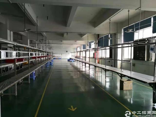 公明南光龙大高速口原房东1500平米精装修厂房出租-图5