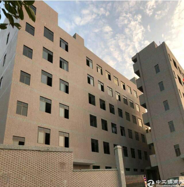 东莞东部很漂亮全新9600平方独院厂房出售