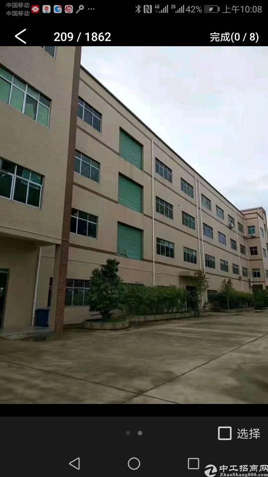 惠城区江北小金口八成新标准厂房出售。