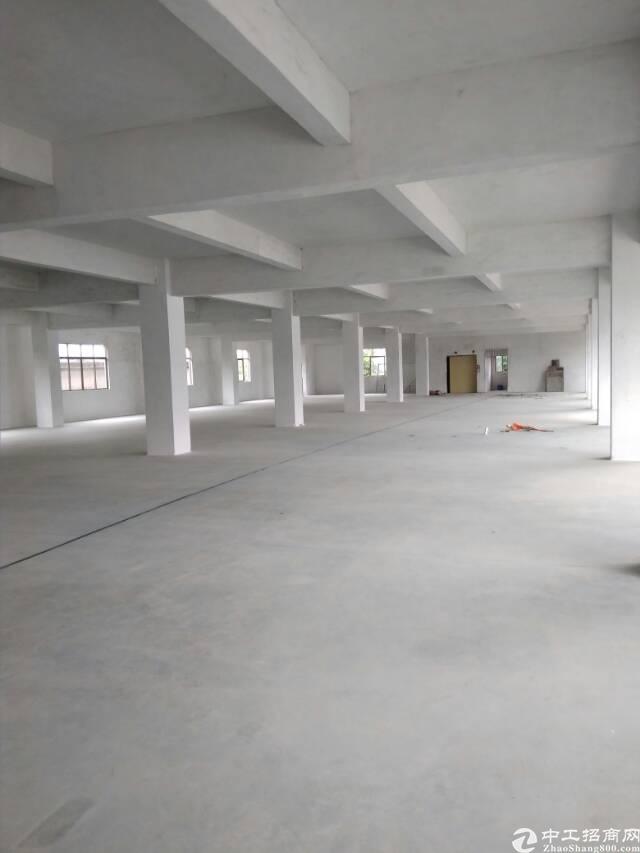 惠州博罗全新标准工业厂房招租-图4