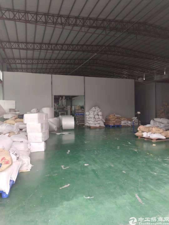 茶山镇工业区原房东分租一栋滴水九米单一层2750平方(加阁楼