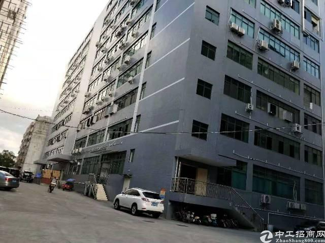 (出租)分租或者转租宝安新安2000平米厂房