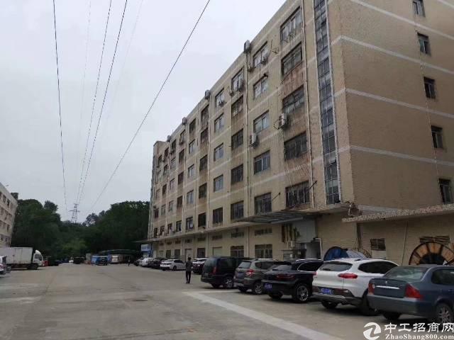 南联新出楼上带地坪漆厂房500平起租