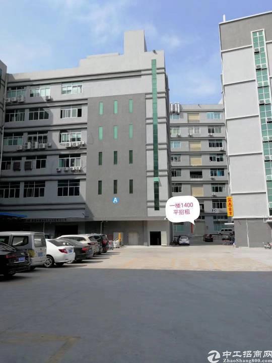 凤岗镇五联新出一楼7米高1400平方