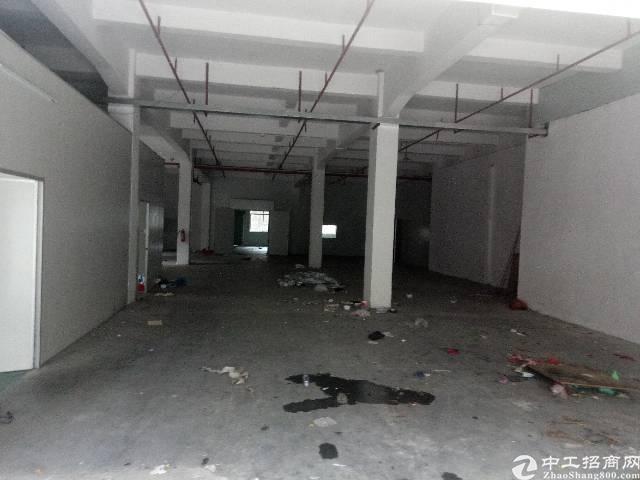 茶山镇标准厂房二楼分租800平方