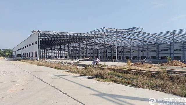 茶山镇11万平方超大钢结构厂房厂房共6栋