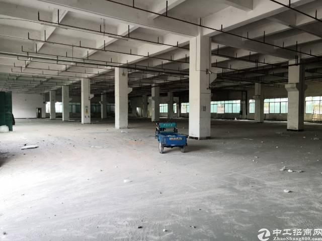 原房东带红本  工业用地厂房出租一楼