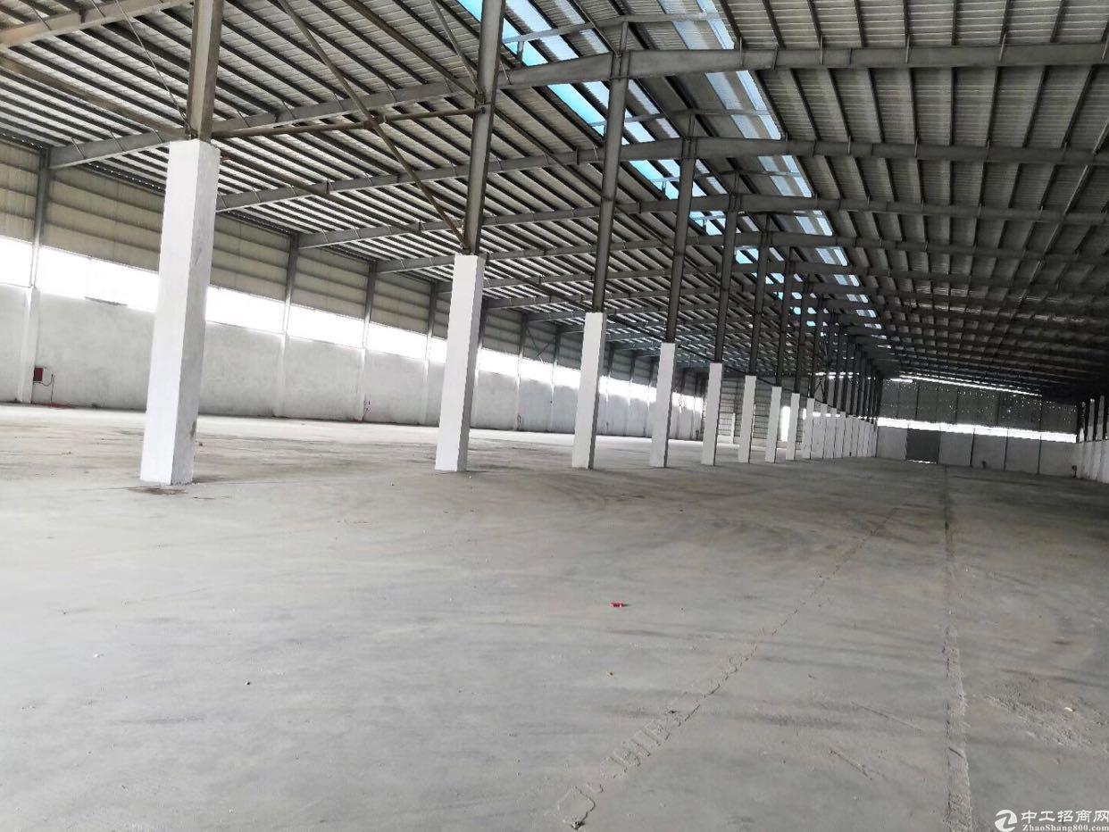 广州新塘高台仓库出租