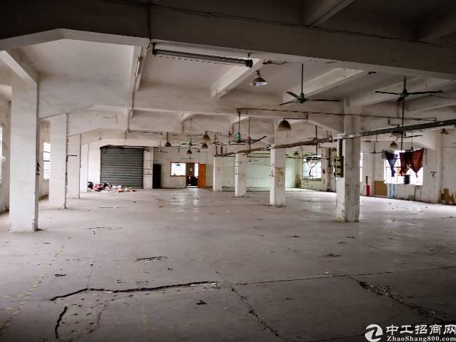 茶山镇新空出标准厂房二楼1400平方招租
