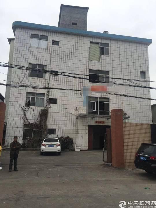 茶山工业区标准厂房分租二楼1500平方