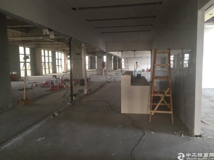 坪山中心区毛坯写字楼实惠价格招商出租