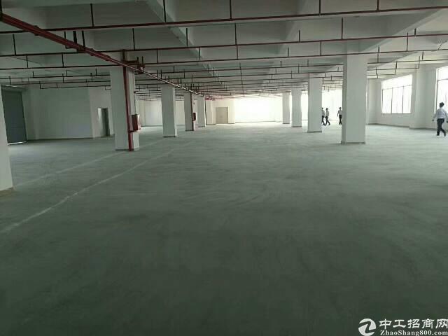 平湖独院厂房分租一楼1500平米出租可分租