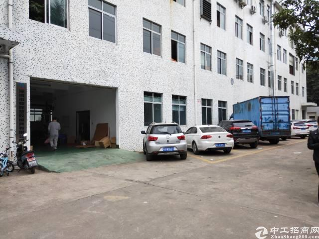 凤凰原房东独院一楼800平米精装修不要转让费厂房出租