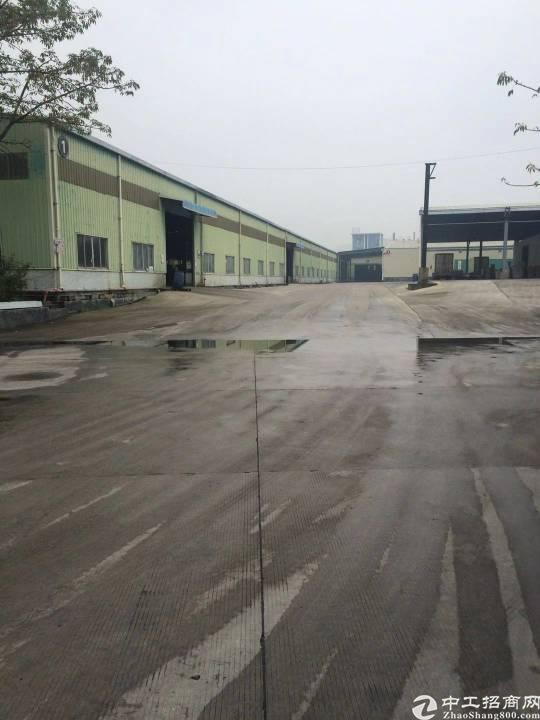 南城新出钢构仓库5000至8000平方米招租