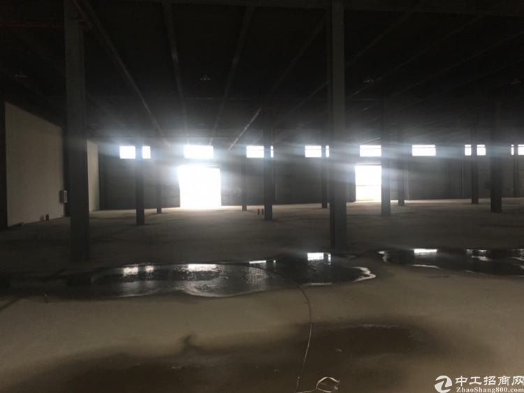 武汉市东西湖全新物流仓储港出租-图6